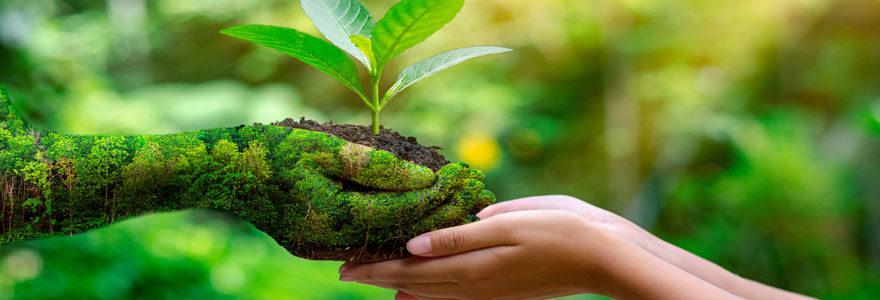 Métier de l'environnement